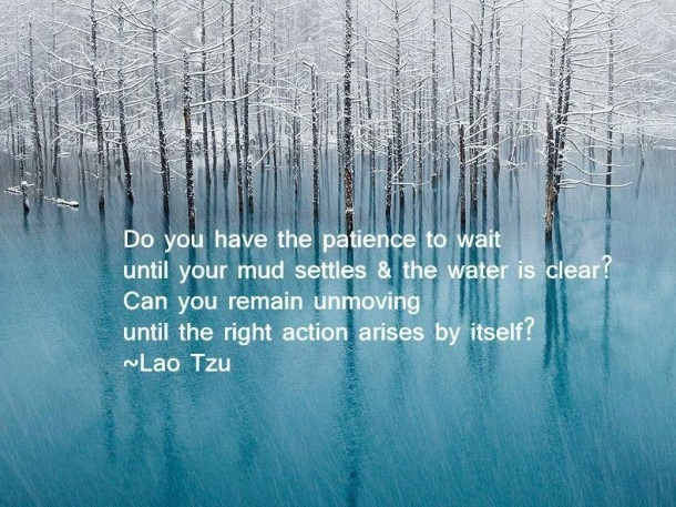 lao tzu mud settling quote